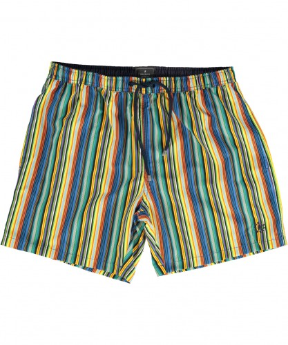 "Swimshort ""multicolour stripe"""